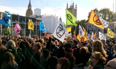 The Extinction Rebellion Lawyer thumbnail